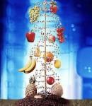Последствия употребления продуктов с ГМО