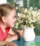 Гомеопатическое лечение детской аллергии