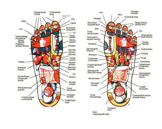 Точки стопы
