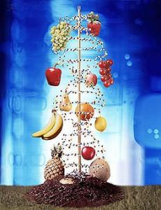 генномодифицированные организмы
