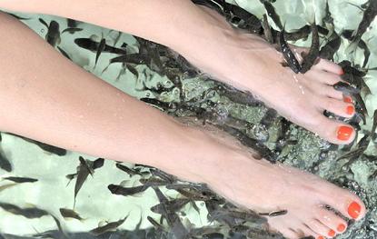 женские ноги в воде