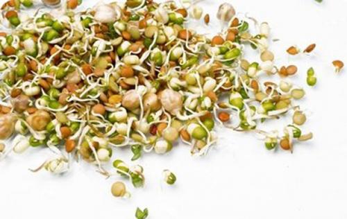 зерна пшеницы разбросаны на столе