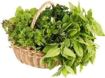 свежая зелень в корзине