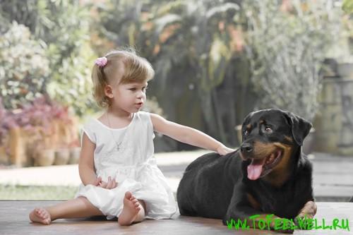 девочка сидит рядом с собакой