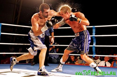 боксеры дерутся на ринге