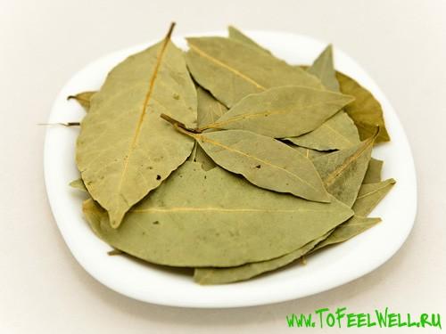 лавровые листья на белой тарелке
