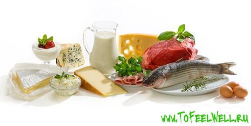 белковые продукты на белом фоне