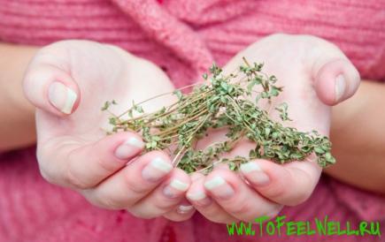 держит сухую траву в руках