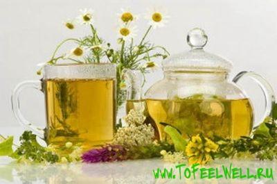 чайник и травы на белом фоне