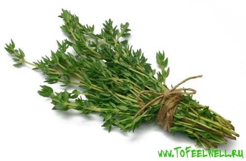 пучок травы на белом фоне