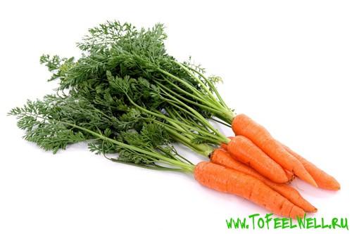 морковь с ботвой на белом фоне